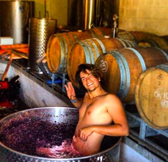 woofer dans un bac de vin