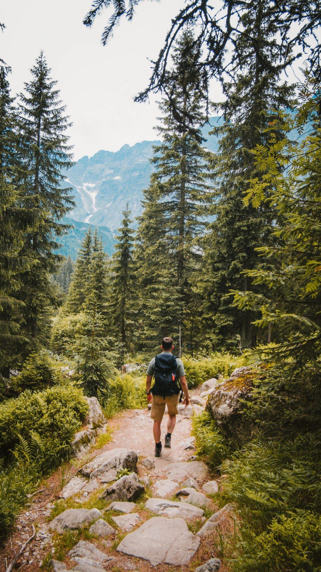 homme dans la forêt dans la nature